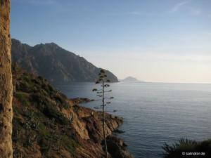 Rund Korsika