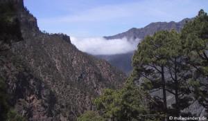 La Palma | Wanderung 3
