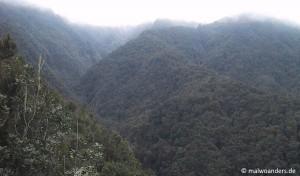 La Palma | Wanderung 4